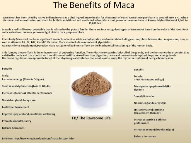 The Benefits of MACA!